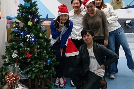 Holiday Fencing 8